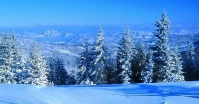 Зима на Доновалах